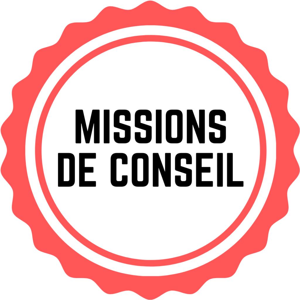 Formation RSE : missions de conseil